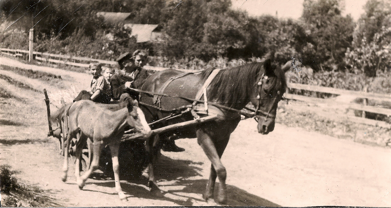 Зліва на право: Віктор Саліженко, Сергій Іващенко, Анатолій Іващенко, Дмитро Горбань, 1960-ті роки
