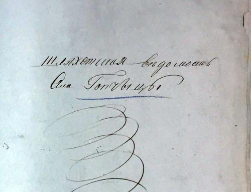 Шляхта чиншова в Гопчиці. Ревізія 1811 року